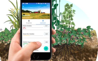 Diagnostic de sol par les plantes bioindicatrices- Application ANDROID
